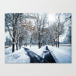 Two roads that go through the Park Canvas Print