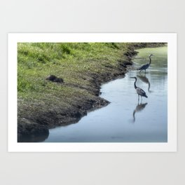 Sharing the River Art Print