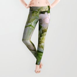 Iceberg Lettuce Leggings