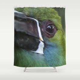 tucan esmeralda Shower Curtain