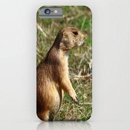 Black-tailed Prairie Dog Pose iPhone Case