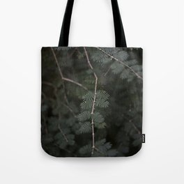 Plant - Fern 3 Tote Bag