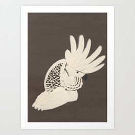 Cockatoo Art Print