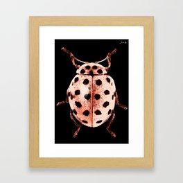 Insecte rose et noir colors fashion Jacob's Paris Framed Art Print