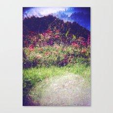 Flowers Plastic Camera Double Exposure Canvas Print
