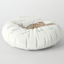 Anatomy of a Snail Floor Pillow
