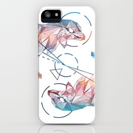 Spirit of the Dolphin iPhone Case