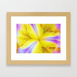Retro Iris Framed Art Print