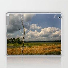 Salt Marsh Laptop & iPad Skin
