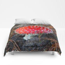 Toxic Beauty Comforters