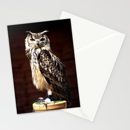 The Batsford Owl Stationery Cards