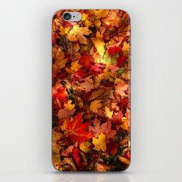Fall in love in Dover iPhone Skin