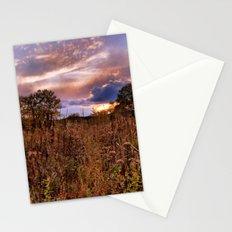Marsh Sunset Stationery Cards