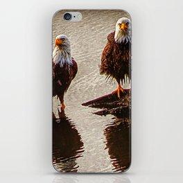 Bald Eagle Pair iPhone Skin