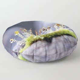 Maco photography Moss Water Drop Rain drops dew Green nature photography Floor Pillow