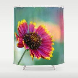 California Blanket Flower Shower Curtain