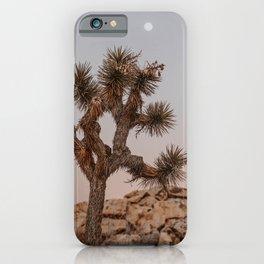 Joshua Tree XXVIII / California Desert iPhone Case
