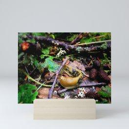 Banana Slug Mini Art Print