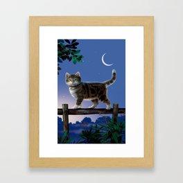 """Mosky Cat """"Night walk"""" Framed Art Print"""