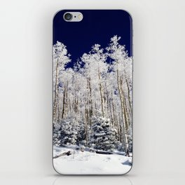 Winter Aspens iPhone Skin
