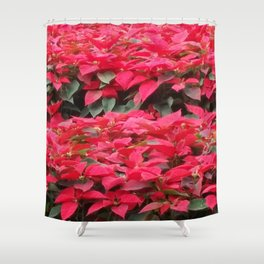 LET'S BE FESTIVE  Shower Curtain