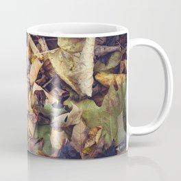 Carpet of Autumn Leaves Coffee Mug