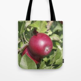 Apple Almost Ready Tote Bag
