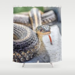 Garter snake with its tongue out Shower Curtain