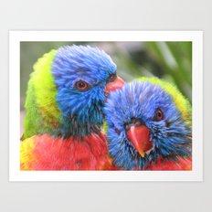 Baby Rainbow Lorikeets Art Print