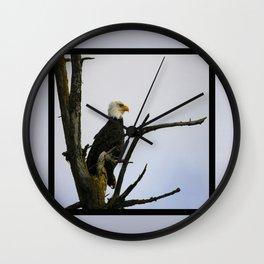 eagle striking a pose Wall Clock