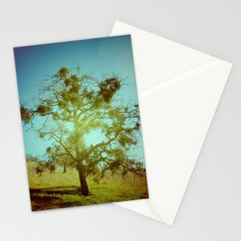 Solo Stationery Cards