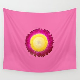 Pink and Yellow Everlasting Flower Wall Tapestry