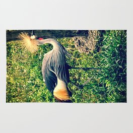 Gray Crowned Crane in High Grasses Rug