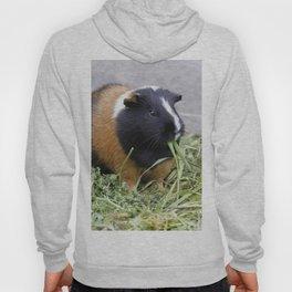 Lovely Guinea Pig Hoody
