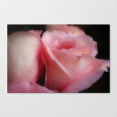 Soft Roses Canvas Print