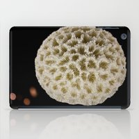 coral iPad Cases featuring Coral by Wolff Prints