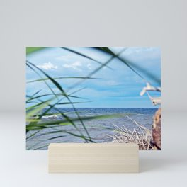 Secluded Beach Mini Art Print