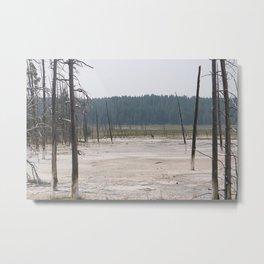 Bobby Sock Trees Metal Print