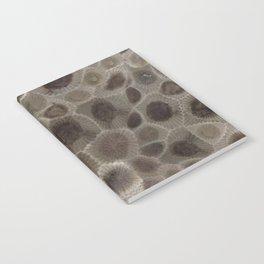 Petoskey Stone Notebook