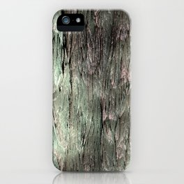 Grannys Hut - Structure 3B iPhone Case