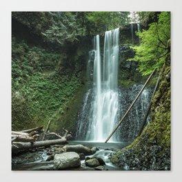 Ecola Falls in Oregon's Columbia River Gorge Canvas Print