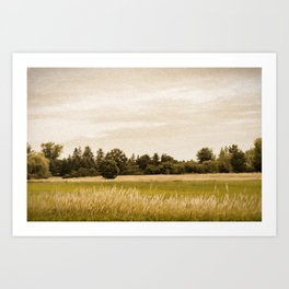 Field with Trees Art Print