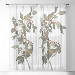 Nashville warbler, Birds of America, Audubon Plate 89 Sheer Curtain