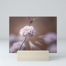 Pink Breeze Mini Art Print