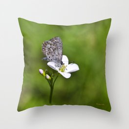 Spring Butterfly Throw Pillow