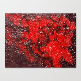Red Cavern Canvas Print