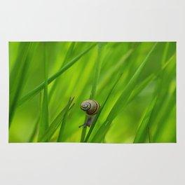 Little Snail in Gras Rug