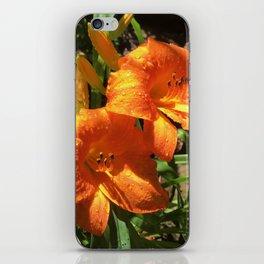 Morning Daylilies iPhone Skin