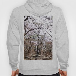 After The Bushfires Have Passed Hoody