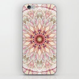 Mandalas for Times of Transition 26 iPhone Skin